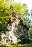 Bello paesaggio in camice sveve Fotografie Stock
