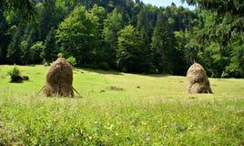 Bello paesaggio in Casa de Piatra Village, Romania Fotografia Stock Libera da Diritti
