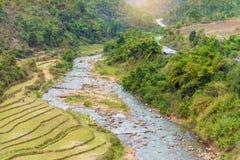 Bello paesaggio circa il giacimento a terrazze del riso con il fiume Fotografia Stock Libera da Diritti