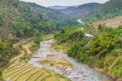 Bello paesaggio circa il giacimento a terrazze del riso con il fiume in Myan Fotografia Stock