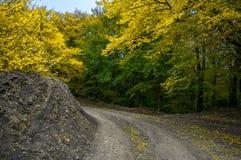 Bello paesaggio colourful di autunno in montagne con la strada della campagna immagine stock