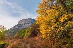 Bello paesaggio colourful di autunno in montagne con la strada della campagna immagini stock libere da diritti