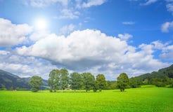 Bello paesaggio con gli alberi e le nuvole bianche Immagini Stock Libere da Diritti