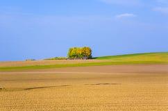 Bello paesaggio con l'acro Fotografia Stock