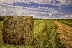 Bello paesaggio con le balle della paglia nella conclusione di estate Fotografie Stock