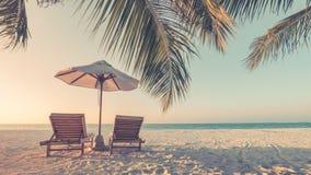 Bello paesaggio d'annata della spiaggia Scena tropicale della natura Palme e cielo blu Vacanza estiva e concetto di vacanza fotografia stock