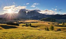Bello paesaggio da Alpe di Siusi, Italia in Li di alba di estate Immagine Stock