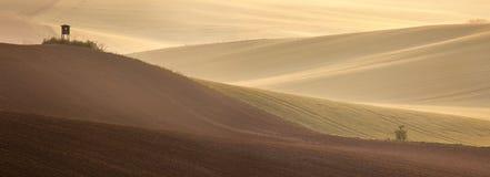 Bello paesaggio dei campi della campagna a tempo di alba fotografie stock