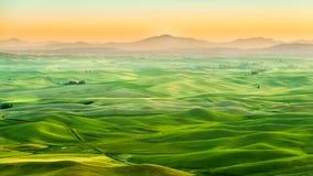 Bello paesaggio del campo del raccolto in Palouse Fotografia Stock Libera da Diritti
