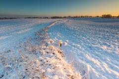 Bello paesaggio del campo di inverno Fotografie Stock Libere da Diritti