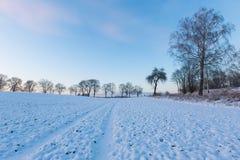 Bello paesaggio del campo di inverno Immagini Stock Libere da Diritti
