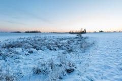 Bello paesaggio del campo di inverno Fotografia Stock Libera da Diritti