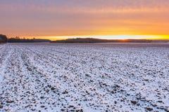 Bello paesaggio del campo di inverno Immagini Stock