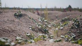 Bello paesaggio del deserto Piccole colline, terra rocciosa e piccole piante archivi video