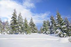 Bello paesaggio del fianco di una montagna di inverno Fotografia Stock