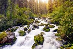 Bello paesaggio del fiume della montagna Immagine Stock