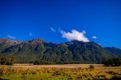 Bello paesaggio del ghiacciaio dell'alta montagna a Milford Sound, in isola del sud in Nuova Zelanda Immagine Stock Libera da Diritti
