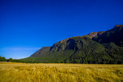 Bello paesaggio del ghiacciaio dell'alta montagna a Milford Sound, in isola del sud in Nuova Zelanda Immagini Stock Libere da Diritti