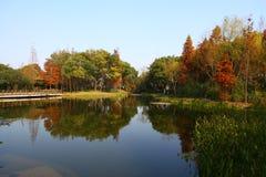 Bello paesaggio del lago Immagine Stock Libera da Diritti