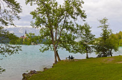 Bello paesaggio del lago Bled, sanguinato, Slovenia della molla Fotografie Stock Libere da Diritti