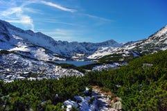 Bello paesaggio del lago della montagna Alti tatras poland Fotografia Stock Libera da Diritti
