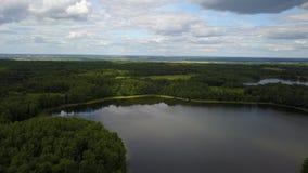 Bello paesaggio del lago Ostrovskoe archivi video