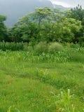 Bello paesaggio del nostro villaggio Fotografia Stock