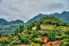 Bello paesaggio del Vietnam del Nord Immagini Stock