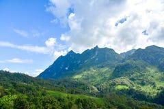 Bello paesaggio dell'alta montagna di Doi Luang Chiang Dao Immagini Stock Libere da Diritti