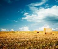 Bello paesaggio dell'azienda agricola di estate con il mucchio di fieno Fotografie Stock Libere da Diritti