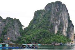 Bello paesaggio della baia di Halong Fotografia Stock