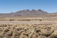 Bello paesaggio della Bolivia Fotografia Stock