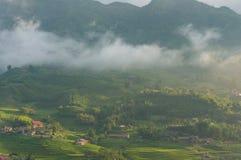 Bello paesaggio della campagna del paesino di montagna con il te del riso Fotografie Stock Libere da Diritti