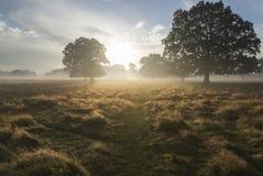 Bello paesaggio della campagna di alba di autunno Fotografia Stock Libera da Diritti