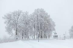 Bello paesaggio della città di inverno durante la tempesta della neve Immagini Stock