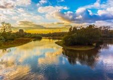 Bello paesaggio della foresta del Reno immagine stock