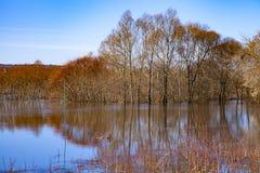 Bello paesaggio della molla con un fiume rovesciato Fotografia Stock Libera da Diritti