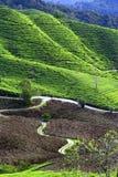 Bello paesaggio della montagna Fotografia Stock Libera da Diritti