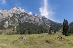 Bello paesaggio della montagna accanto a Werfenweng fotografia stock