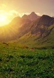 Bello paesaggio della montagna al tramonto Immagine Stock