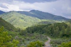 Bello paesaggio della montagna Altai Russia della natura Fotografia Stock