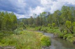 Bello paesaggio della montagna Altai Russia della natura Fotografie Stock
