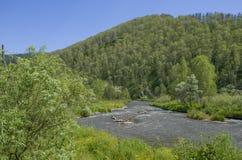 Bello paesaggio della montagna Altai Russia della natura Immagini Stock