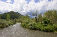 Bello paesaggio della montagna Altai Russia della natura Immagine Stock