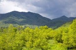 Bello paesaggio della montagna Altai Russia della natura Fotografie Stock Libere da Diritti