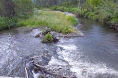 Bello paesaggio della montagna Altai Russia della natura Immagine Stock Libera da Diritti