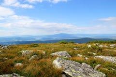 Bello paesaggio della montagna con erba alta e pietre su un fondo di cielo blu e delle nuvole Fotografia Stock