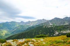 Bello paesaggio della montagna con erba alta e pietre su un fondo di cielo blu e delle nuvole Immagini Stock Libere da Diritti