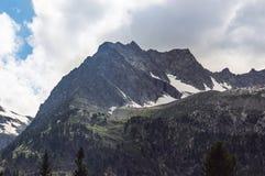 Bello paesaggio della montagna con gli alberi ed i picchi di montagna Immagine Stock
