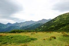 Bello paesaggio della montagna con vegetazione sui precedenti di cielo blu Immagine Stock Libera da Diritti